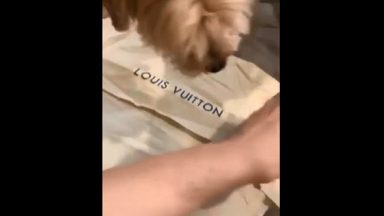 Damn: He Really Just Did That To The Brand New Louis Vuitton!