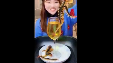 What's Making Them Pop Like That? Girl Dipping Live Giant Centipedes Then Eating Them!
